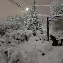 Feb 8 - Storm #2